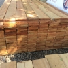 1x4 Cedar Pickets - $0.99 Each