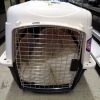 Pet Carrier M103