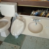 Bathroom sink counter top & Toilet - $100 (Roanoke Rapids, NC)